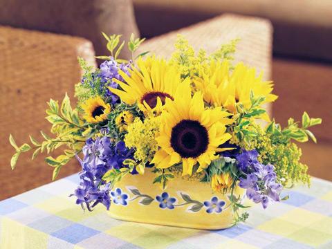 http://yoocards.com/data/media/26/flower83.jpg